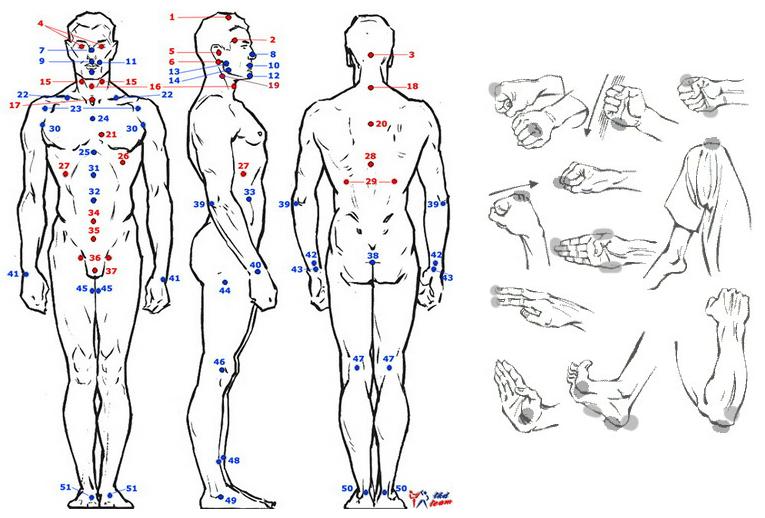 Druckpunkte und Schwachstellen des Körpers